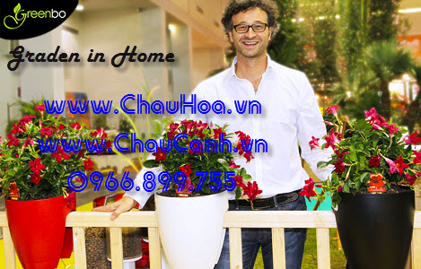 Chậu hoa treo lan can Garden in home