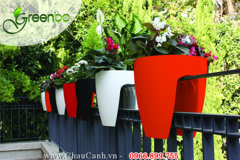 COMBO 10 - CHẬU HOA TREO LAN CAN GREENBO GARDEN IN HOME